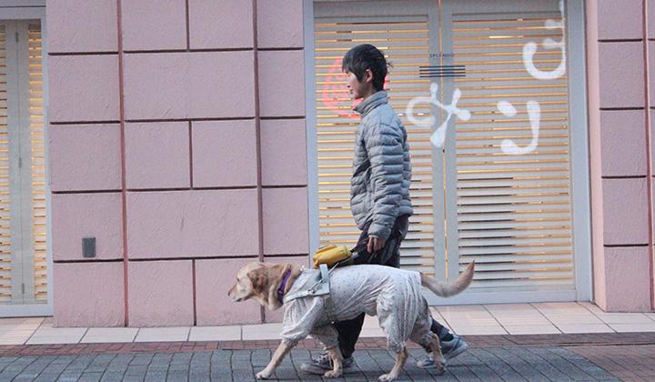 外を歩くユーザー矢野さんと盲導犬エミー