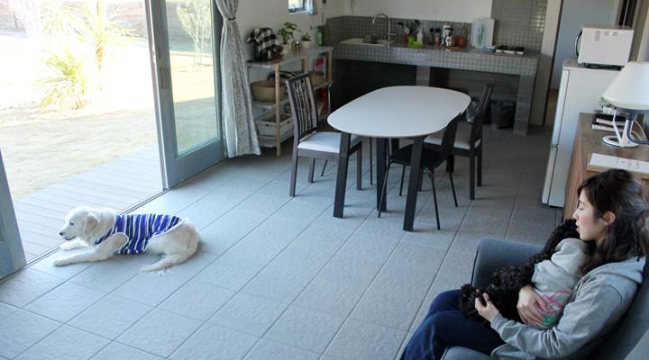 窓をあけてリビングから庭を眺める人と犬
