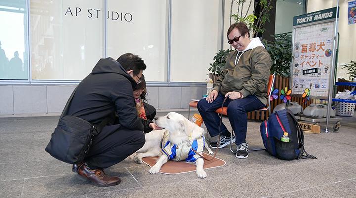 盲導犬ルートとのふれあい写真
