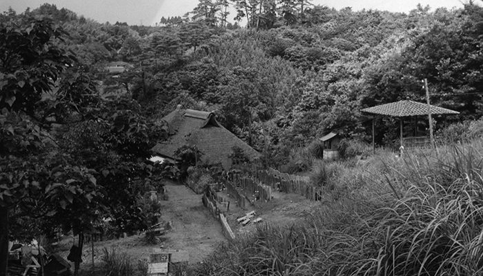 後に霊園になる山のモノクロ写真