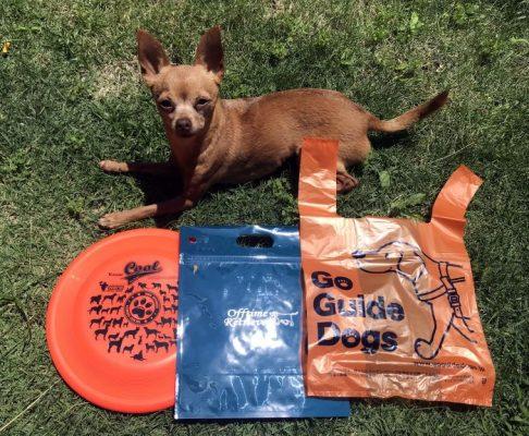 WAN-PACK(わんぱっく)とワンツー袋と超小型犬とフリスビーディスクのサイズ比較写真
