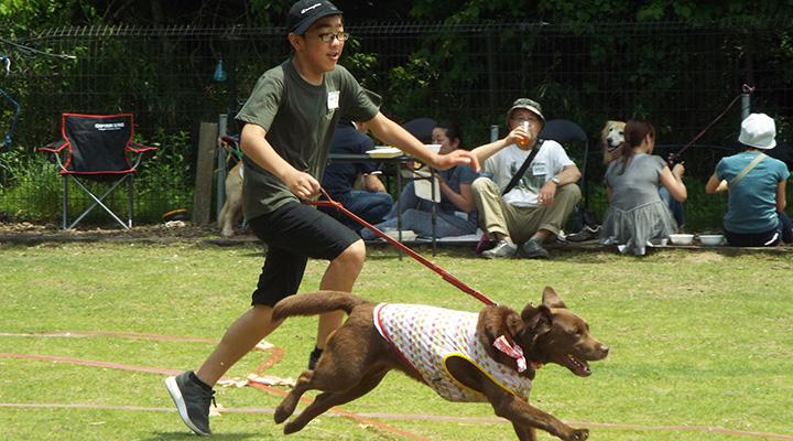 全速力で走るレトと飼い主の写真