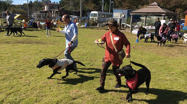 飼い主が犬のリードを持ち走る。逆の手には、テニスボールが乗ったお皿を持っている