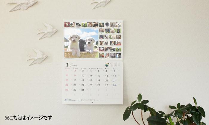 白い壁に、カレンダーがかかっている写真