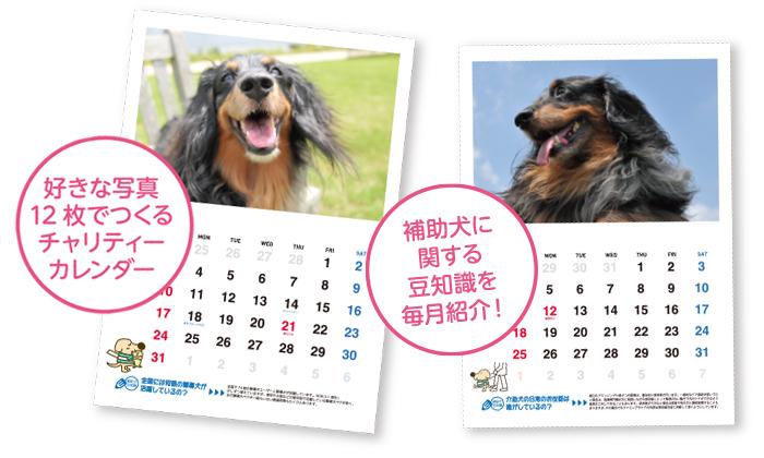 好きな写真12枚でつくるチャリティーカレンダー。補助犬に関する豆知識を毎月紹介