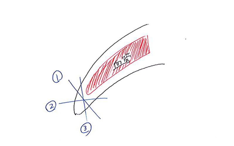 爪の切り方イラスト